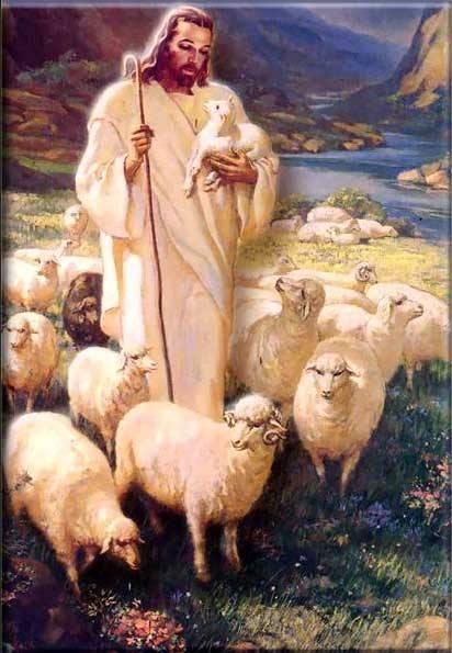 Lectura según san Juan (10,27-30):