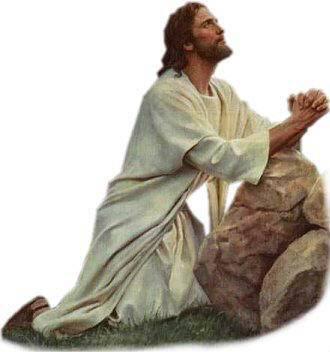 Evangelio del día según San Juan 17,20-26.