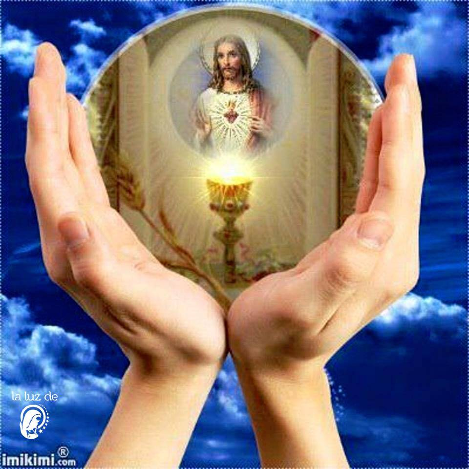 Gracias, Jesús mío – Poderosa Oración –