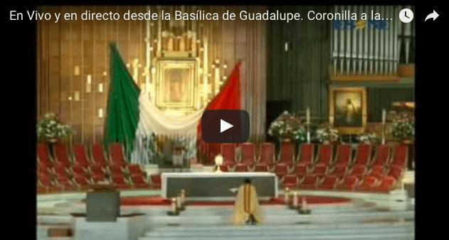 En Vivo y en directo desde la Basílica de Guadalupe. Coronilla a la Divina Misericordia