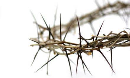 Don de amor para nuestra salvación