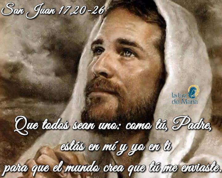 Evangelio según San Juan 17,20-26.