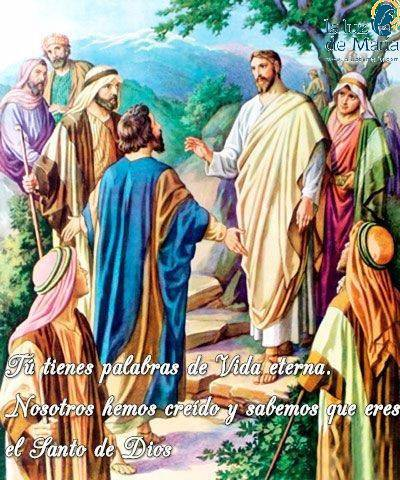 Tú tienes palabras de Vida eterna. Nosotros hemos creído y sabemos que eres el Santo de Dios