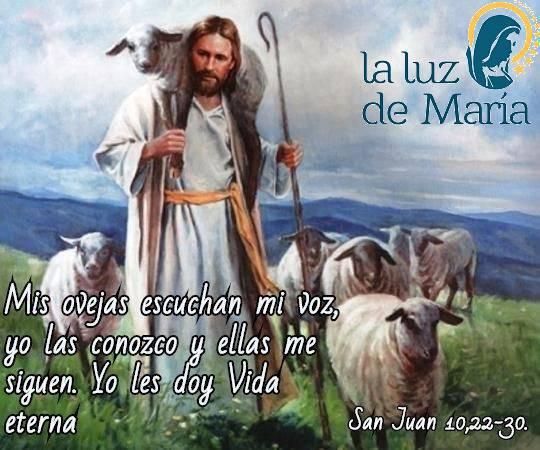 Evangelio según San Juan 10,22-30.