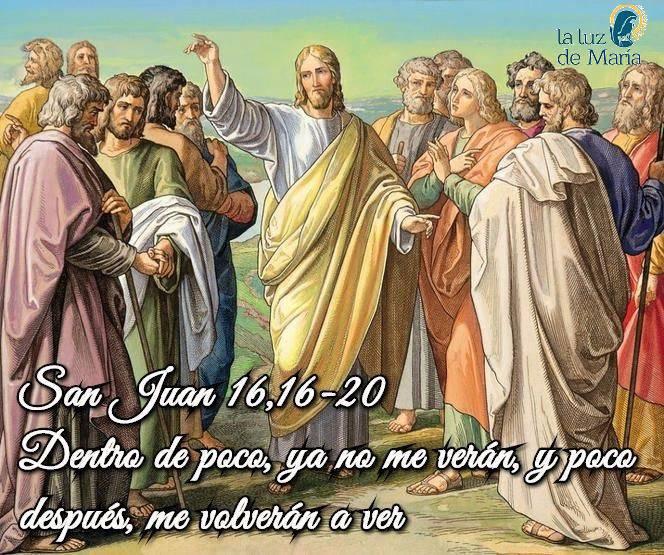 Evangelio según San Juan 16,16-20.