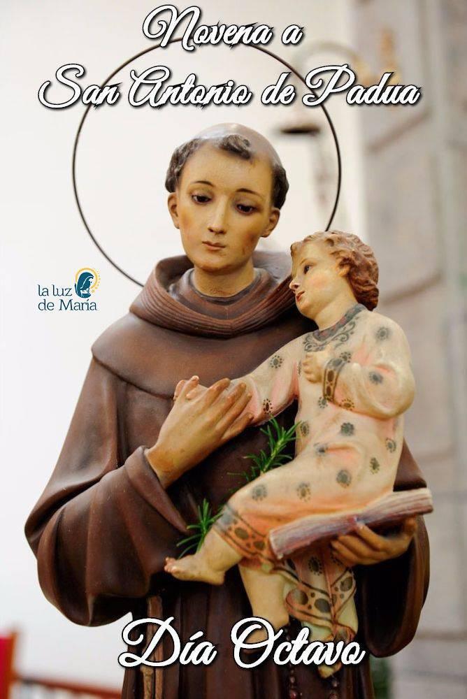 Novena a San Antonio de Padua (Día Octavo)