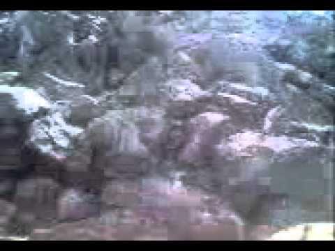 Vídeo Gran Milagro a Medjugorje. Nadie puede negar la evidencia de lo que ha ocurrido.