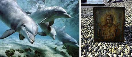 Milagro increíble: 12 delfines llevan a orilla una imagen de la Virgen