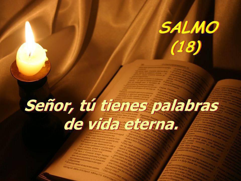 Señor, tú tienes palabras de vida eterna