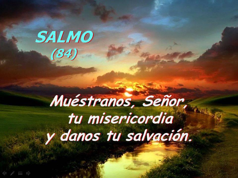 Muéstranos, Señor, tu misericordia y danos tu salvación