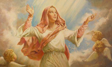 Solemnidad de la Asunción de la Virgen María, defensora de los cristianos