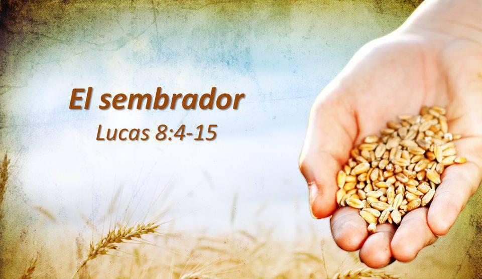 Evangelio según San Lucas 8,4-15.