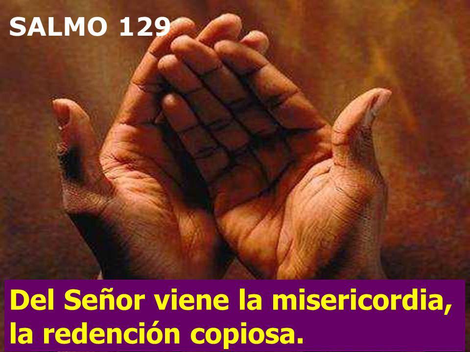 Del Señor viene la misericordia, la redención copiosa