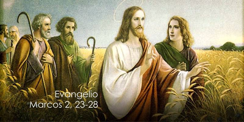 Evangelio según San Marcos 2,23-28.