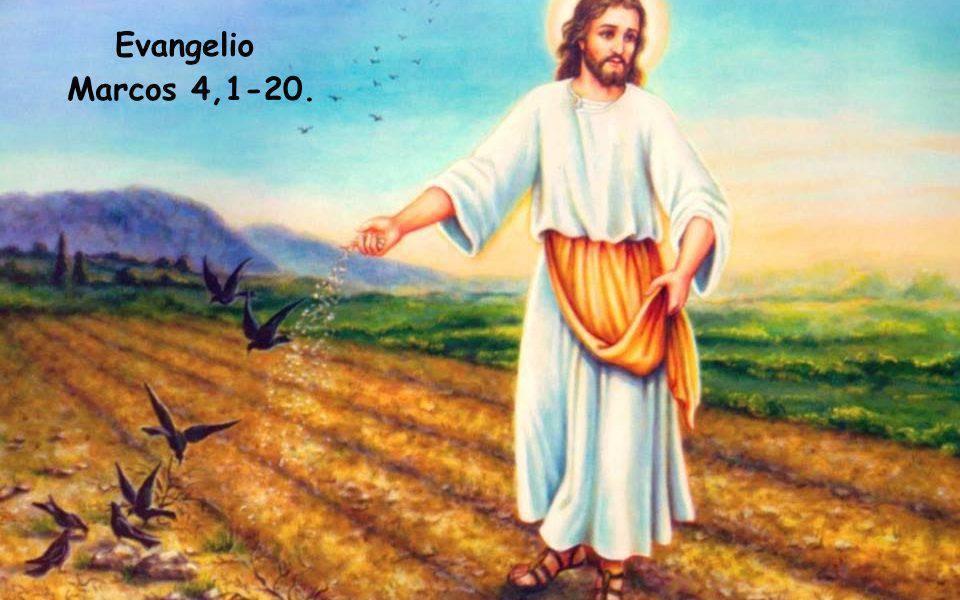 Evangelio según San Marcos 4,1-20.