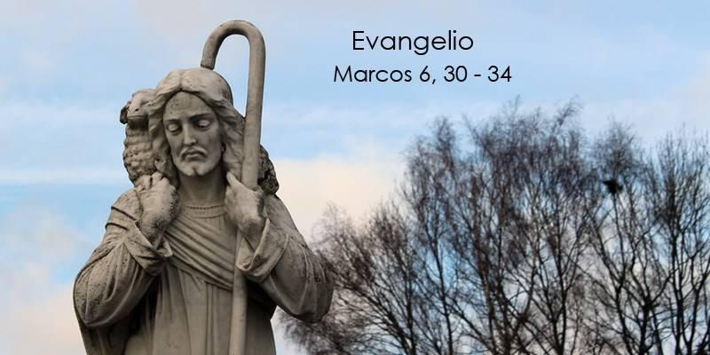 Evangelio según San Marcos 6,30-34.