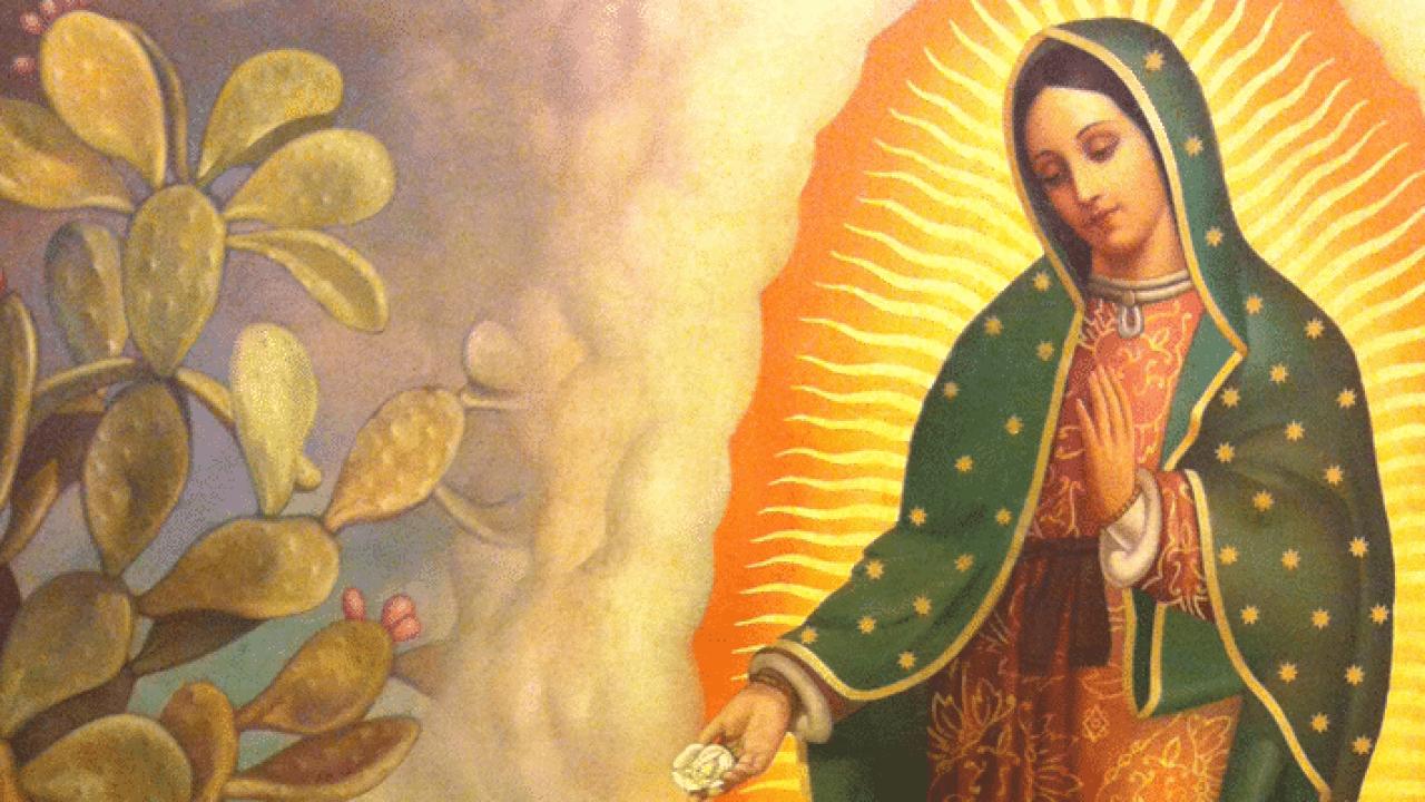 Por qué la Virgen de Guadalupe es más que un ícono religioso para los católicos en México