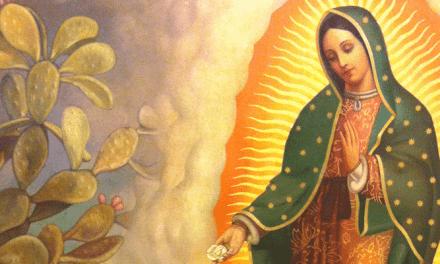 ¡Sorprendente! datos curiosos sobre la Virgen de Guadalupe; el número 6 te impactará