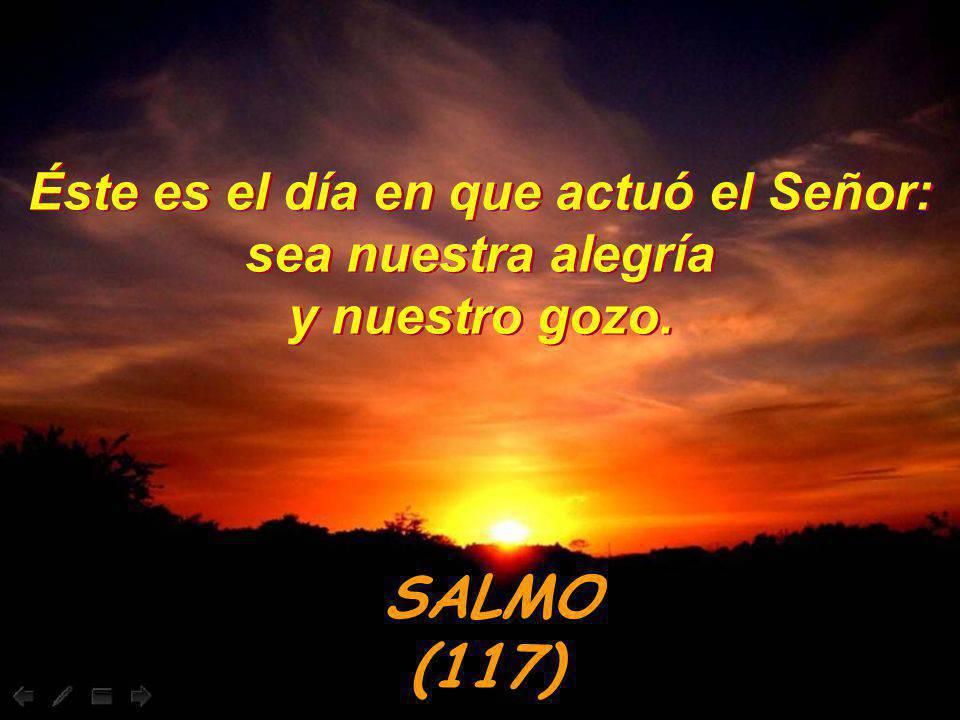 Sal 117