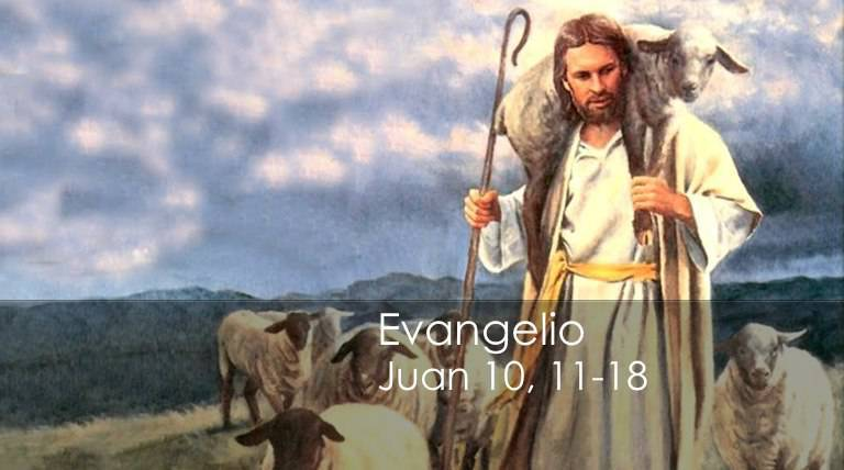 Evangelio según San Juan 10,11-18.