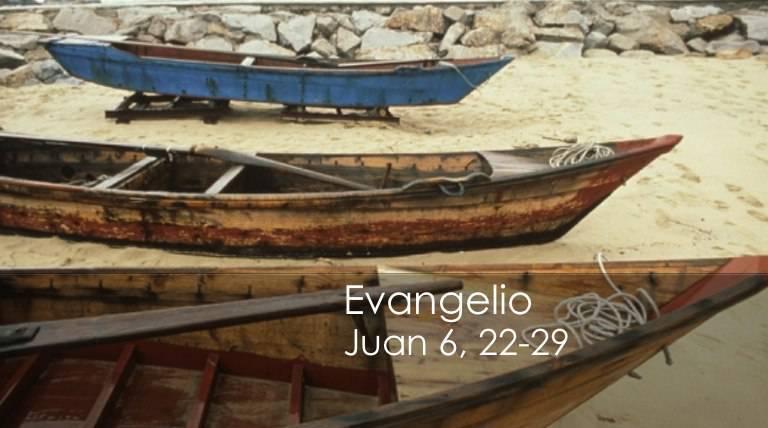 Evangelio según San Juan 6,22-29.