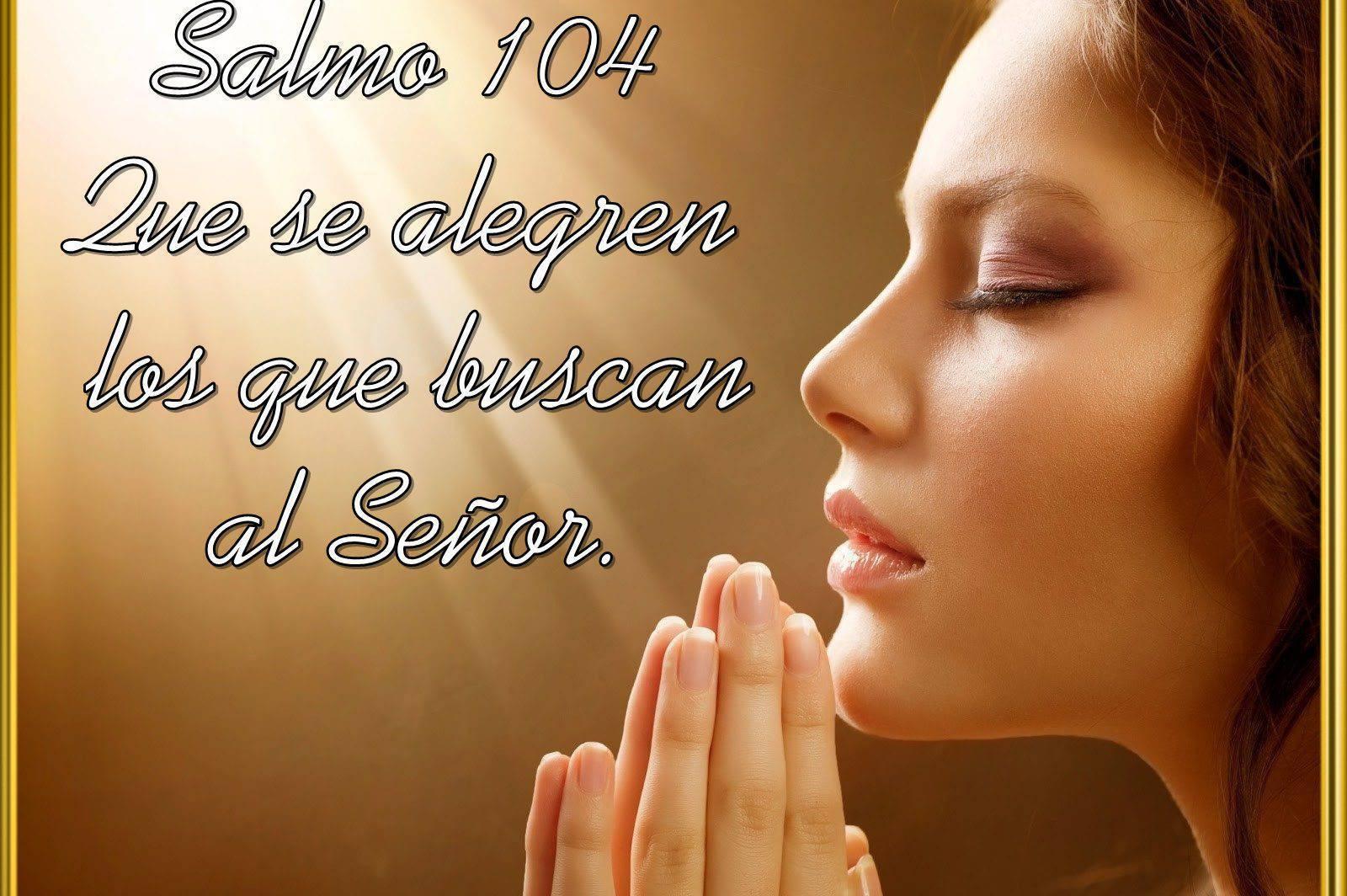 Que se alegren los que buscan al Señor