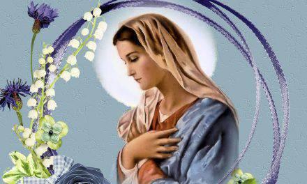 Flor del 10 de mayo: Virgen digna de alabanza