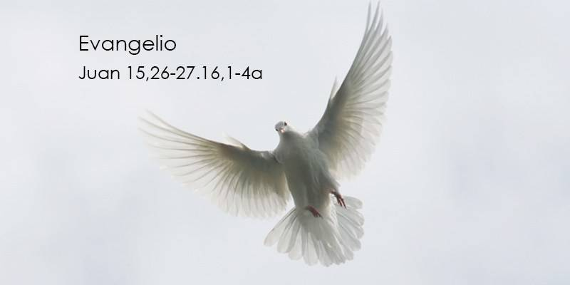 Evangelio según San Juan15,26-27.16,1-4a.