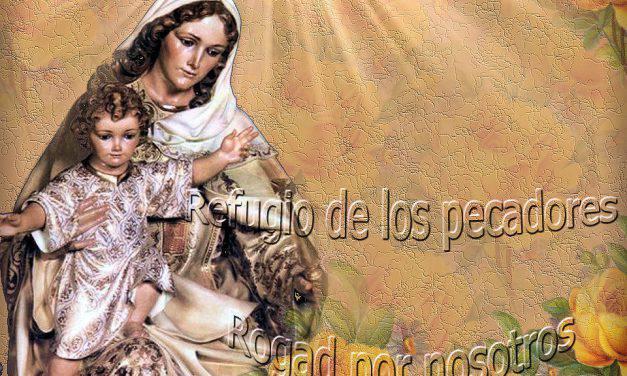 Flor del 25 de mayo: María, refugio de los pecadores