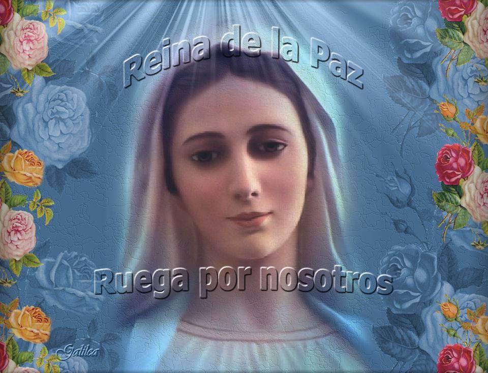 Flor del 30 de mayo: María Reina de la Paz