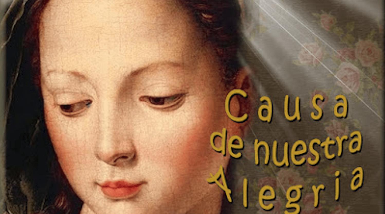 Flor del 15 de mayo: Causa de nuestra alegría