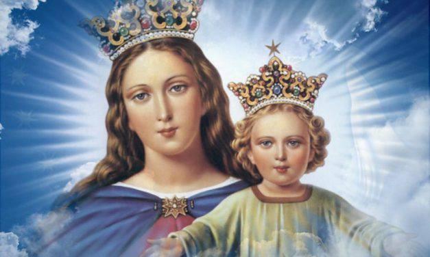Flor del 24 de mayo: María Auxiliadora de los Cristianos