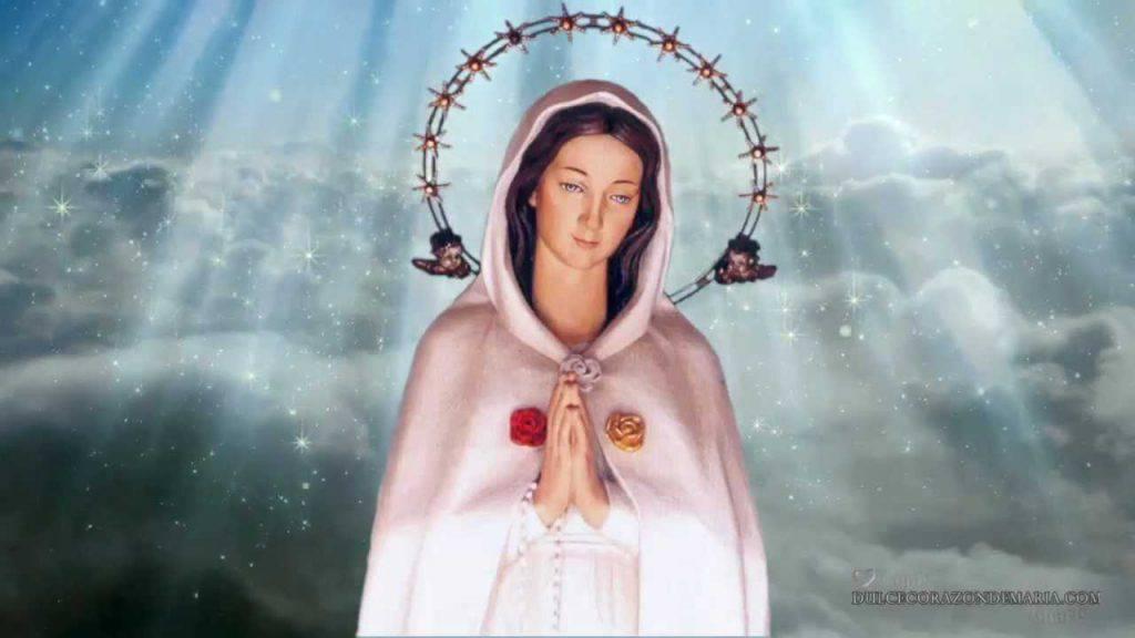 Flor del 27 de mayo: María Rosa Mística