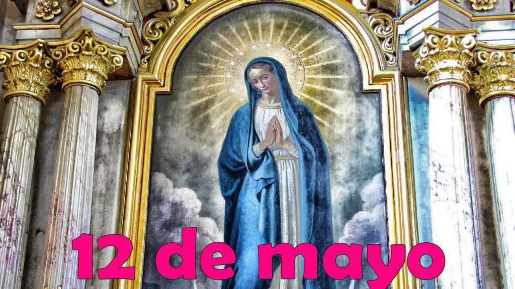Flor del 12 de mayo: Madre del buen ejemplo