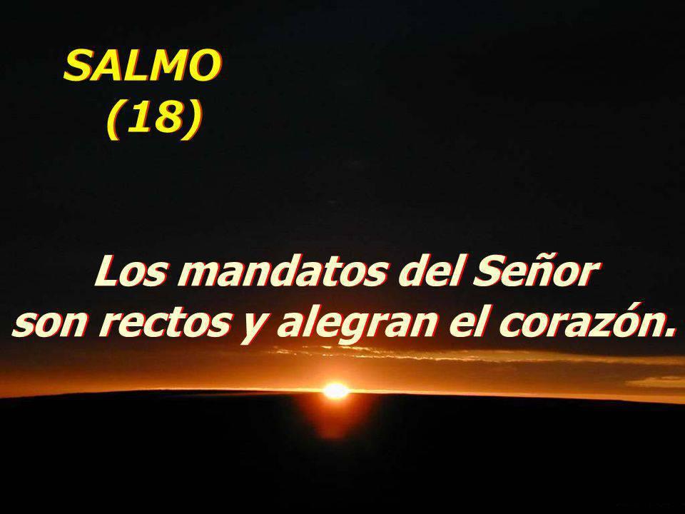 Los mandatos del Señor son rectos y alegran el corazón