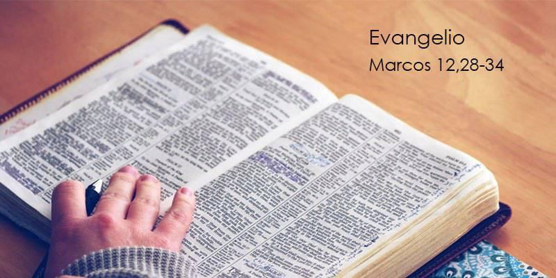 Evangelio según San Marcos12,28-34.