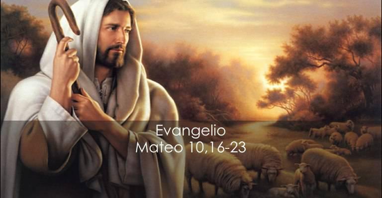 Evangelio según San Mateo 10,16-23.