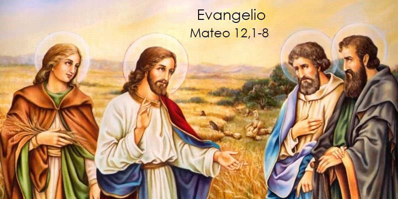 Evangelio según San Mateo 12,1-8.