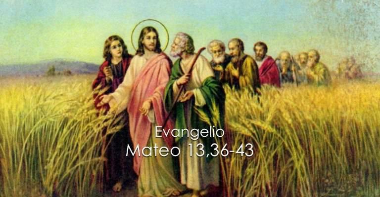Evangelio según San Mateo 13,36-43