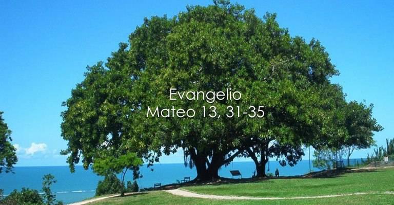 Evangelio según San Mateo 13,31-35.