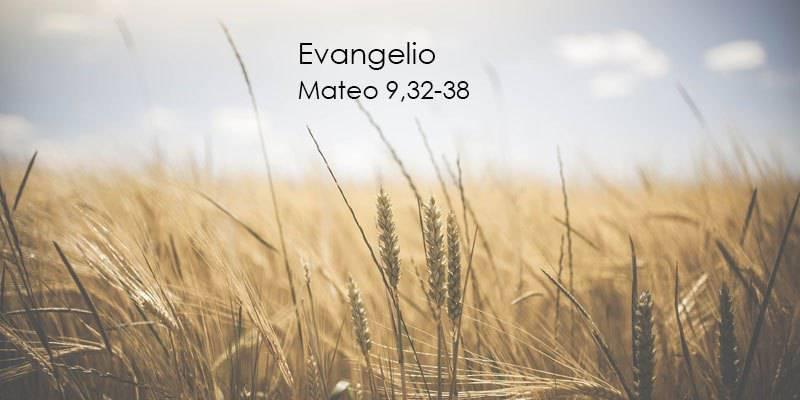 Evangelio según San Mateo 9,32-38