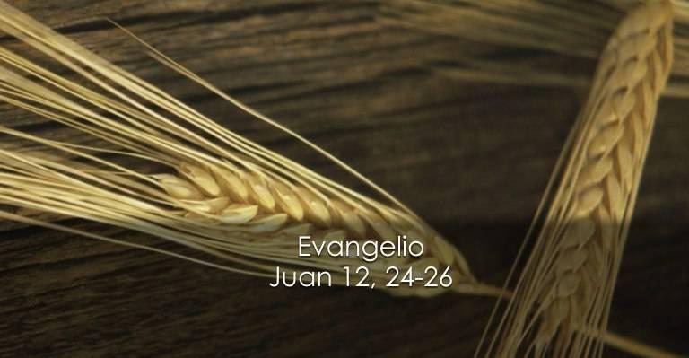 Evangelio según San Juan 12,24-26.