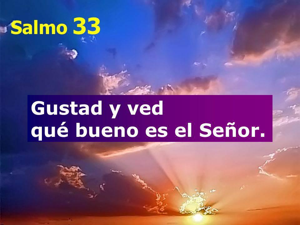 Sal 33