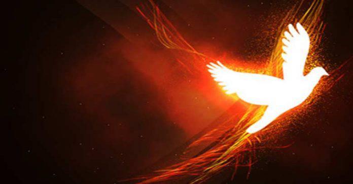 Espiritu-santo-fuego-paloma-de-luz-fondo-rojo-naranja